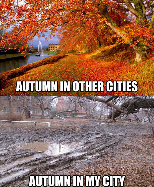 http://themetapicture.com/my-autumns-are-not-as-glamorous/